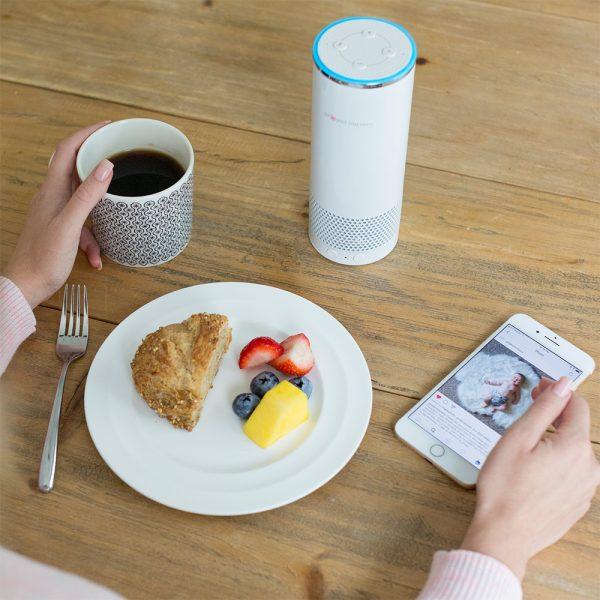 Video Camera with Amazon Alexa Unit
